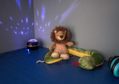 Sensory items in the sensory therapy room at PUCK. Photo description: Close up of sensory therapy items - a nightlight casting soft blue patterns onto the wall, a soft stuffed lion, a soft stuffed snake, and a pair of sound-blocking headphones.