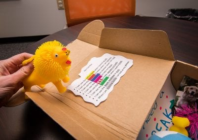 """Photo description: Close up of a therapeutic activity """"break"""" box filled with various items and suggestions for a child who needs a """"break."""" One suggestion reads can use the yellow band when I cannot sit still. A hand to the left of the photo holds a small, squishy plastic toy lion."""