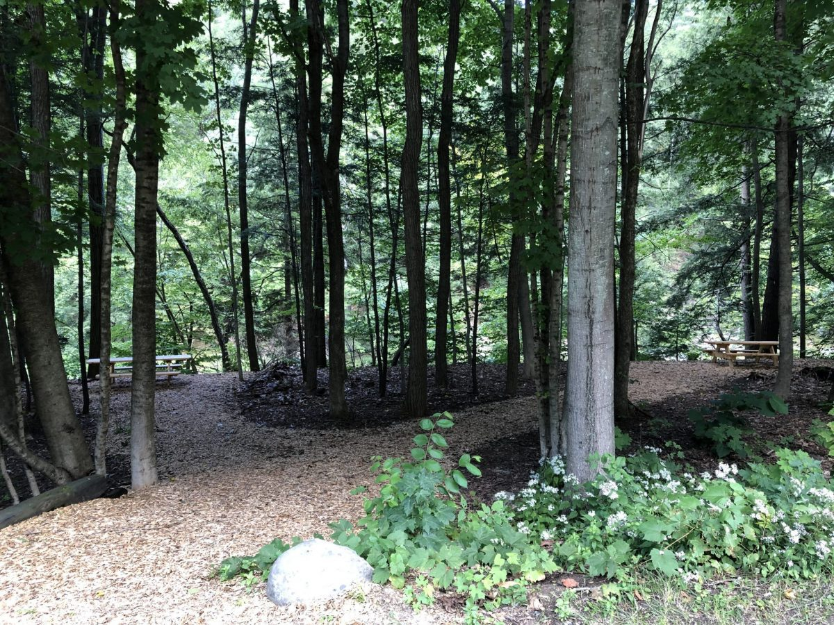 A new woodchip trail can be seen leading to some resting spots with picknic tables along the Black River in Springfield. The area is sorrounded by mature trees and shrubs and a nice spot for walkers using the trail